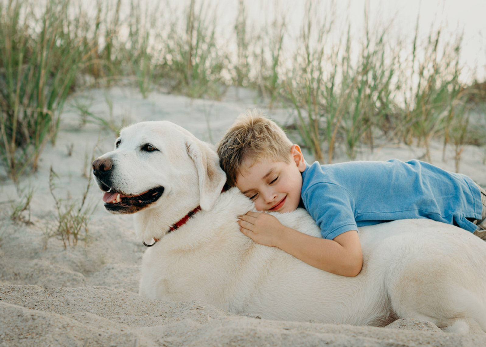 Little-Boy-Hugging-Dog-On-Beach